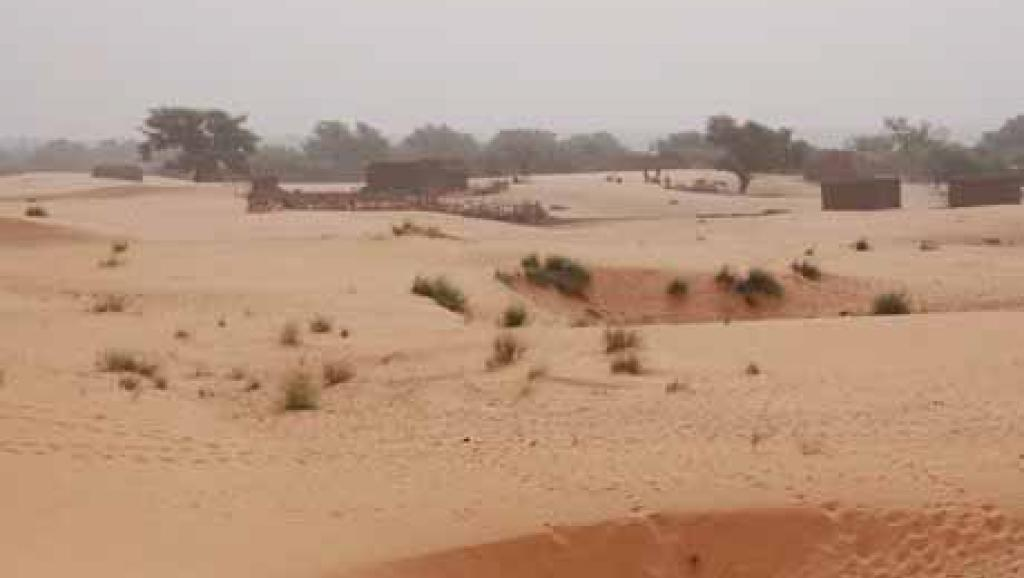 paysage-sahelien-un-jour-d-harmattan1_0