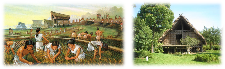ancient-rice-farming.png
