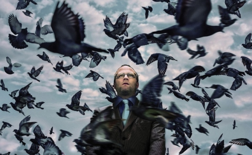 pigeon-king-main__large.jpg
