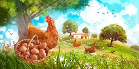 happy-chicken-farm-luis-peres.jpg