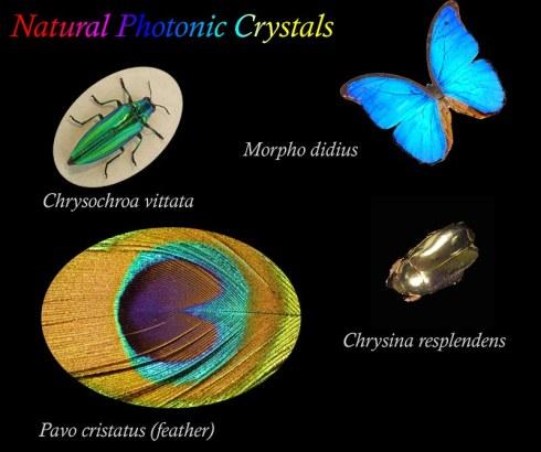 Natural_photonics.jpg
