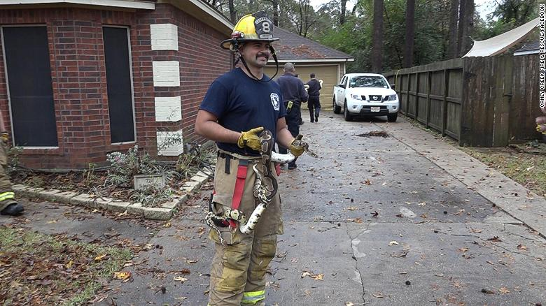181211105811-firefighters-rescue-snakes-01-exlarge-169.jpg