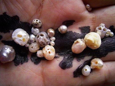 carved-pearl-skulls-vanitas-shinji-nakaba-2