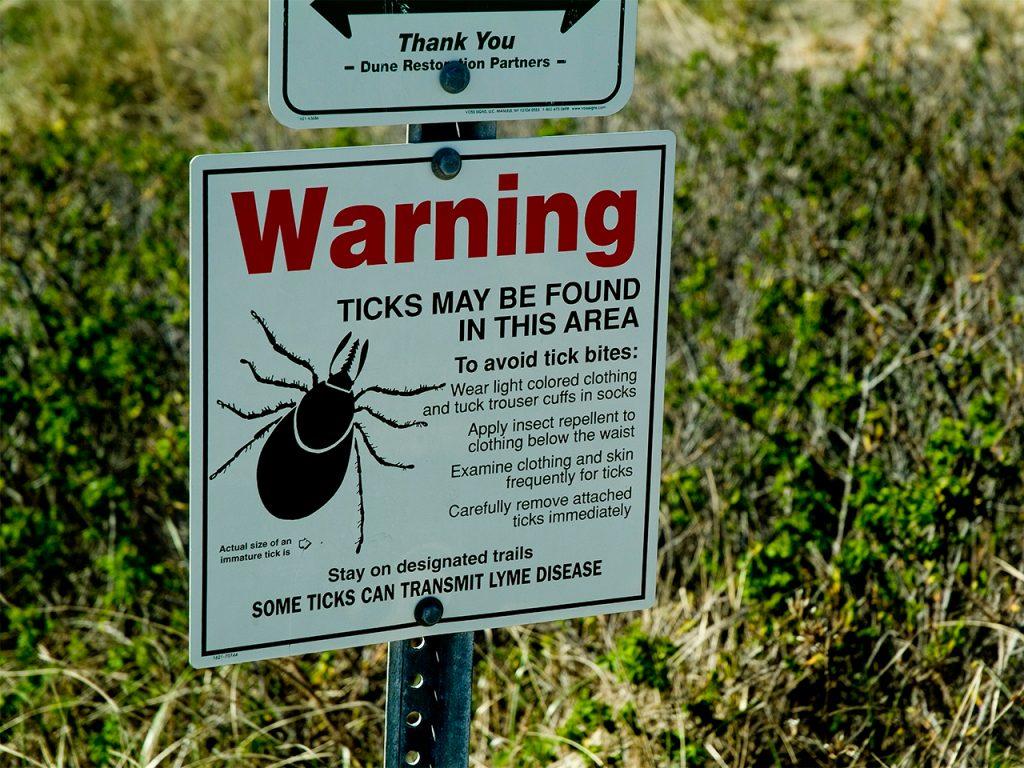 Lyme-disease-on-the-rise-ticks-1024x768