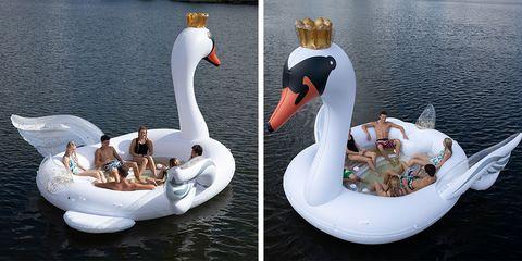 swan-pool-float-1549987766