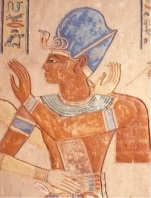 blue_crown_pharaoh