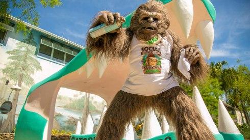200523151406-social-distancing-skunk-ape